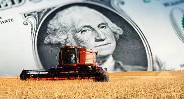 ¿El gobierno Argentino va por las cerealeras?