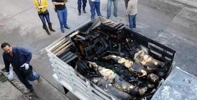 Fotos: Hallan 49 descuartizados en ruta mexicana
