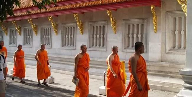 Monje budista mató a un perro y ahora está prófugo