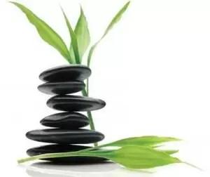 Descubre y aprovecha la energía de cada Piedra