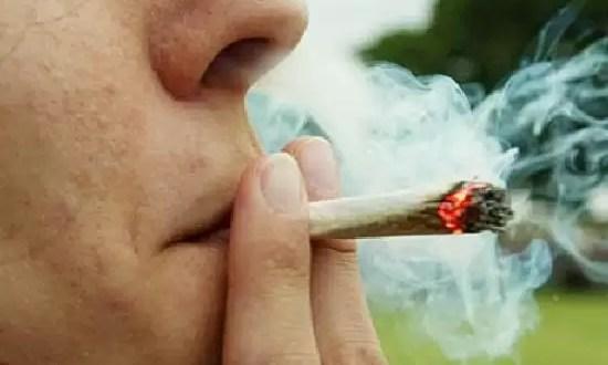 El consumo de marihuana deteriora el cerebro