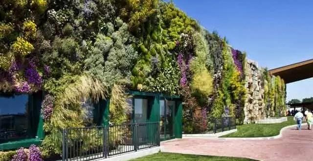 Fotos: Conoce el jardín vertical más grande del mundo