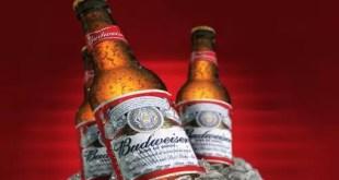 Éstas son las cervezas más populares del mundo