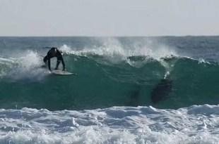 Muere un surfista por ataque de tiburón - Cierran las playas