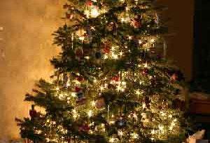 Cuánto cuesta armar el arbolito de Navidad y el pesebre