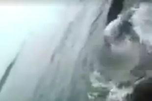 Video: Lo tiran al mar y casi muere atacado por un tiburón