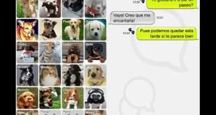 Doggy Talky, la aplicación móvil para mascotas