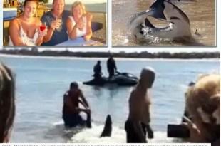 Video: Hombre pelea con tiburón para alejarlo de los niños