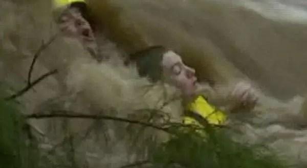 Video: espectacular rescate bajo el agua en Australia
