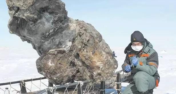 Encuentran sangre de mamut en el Ártico - Video