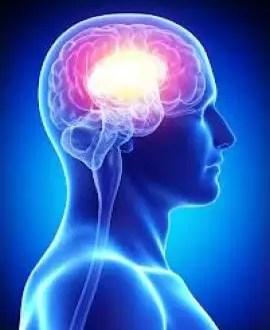 Cómo se puede saber si una persona es muy inteligente