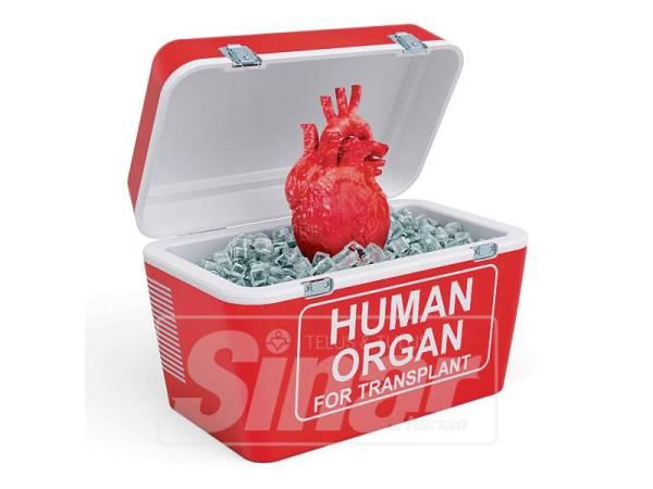 INOVASI itu memberi manfaat kepada sektor bio perubatan dengan mengekalkan kualiti organ untuk pemindahan melalui mengekalkan kesegaran semasa proses pengangkutan organ.