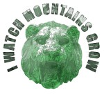 Lion IWMG - Graphic Design