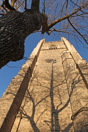 Tree shadow on Soldiers' Tower, University of Toronto