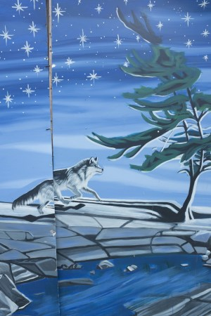 Wolf and stars