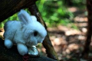 Alice (2 versione)