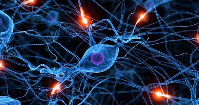 Los tratamientos en el momento se centran en los efectos de la esquizofrenia pero los científicos pueden ahora ser capaces de hacerle frente a la enfermedad. Foto: EFE