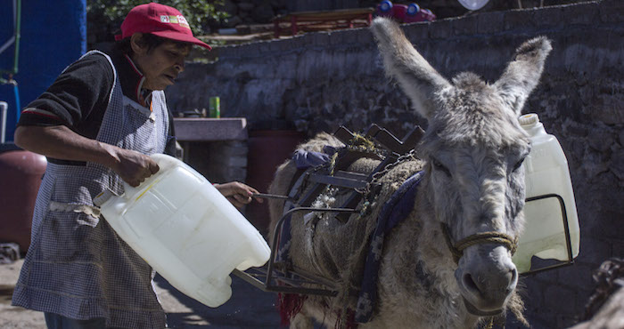 La señora Aurelia Martínez fue una de las primeras pobladoras de la colonia Tecacalanco, en la delegación Xochimilco, ubicada en los límites con Tulyehualco, donde vive desde hace 23 años, mismos que ha pasado sin acceso al servicio de agua entubada. Foto: Archivo/Cuartoscuro.