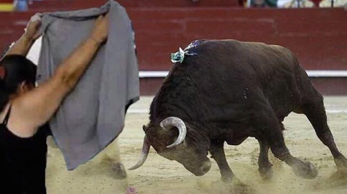 Hay quien le vió la cara de torera. Foto: especial.
