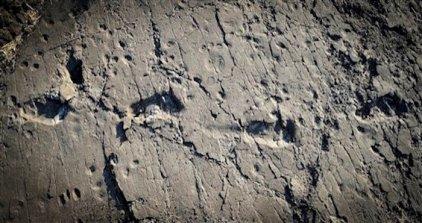 En esta imagen sin fechar, facilitada por Raffaello Pellizzon en diciembre de 2016 muestra las huellas fosilizadas de un ancestro del hombre, se cree que de un Australopithecus afarensis, en el yacimiento de Laetoli, en el norte de Tanzania. (Raffaello Pellizzon via AP)
