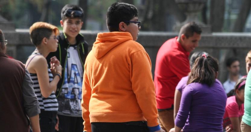 obesidad infantil  3 - Por la puerta grande, denuncian, la chatarra entra a escuelas y nutre crisis de obesidad infantil