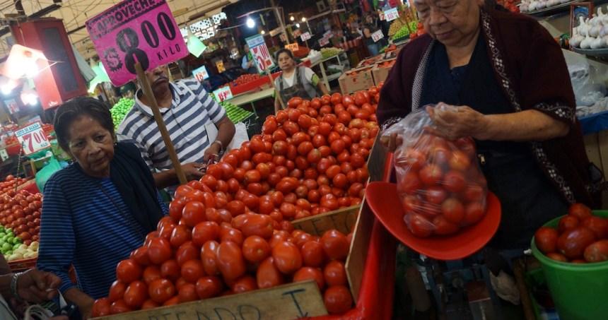 """jitomates sre - La revisión aduanal del 100% al tomate mexicano es """"necedad"""" de Florida, denuncian productores"""