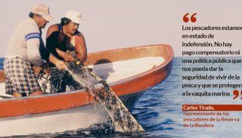 vaquita-marina-pescadores