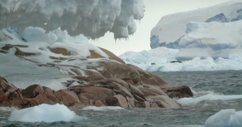 isla - La Antártida y Groenlandia pierden hielo 6 veces más rápido que en los 90, concluyen científicos polares - #Noticias