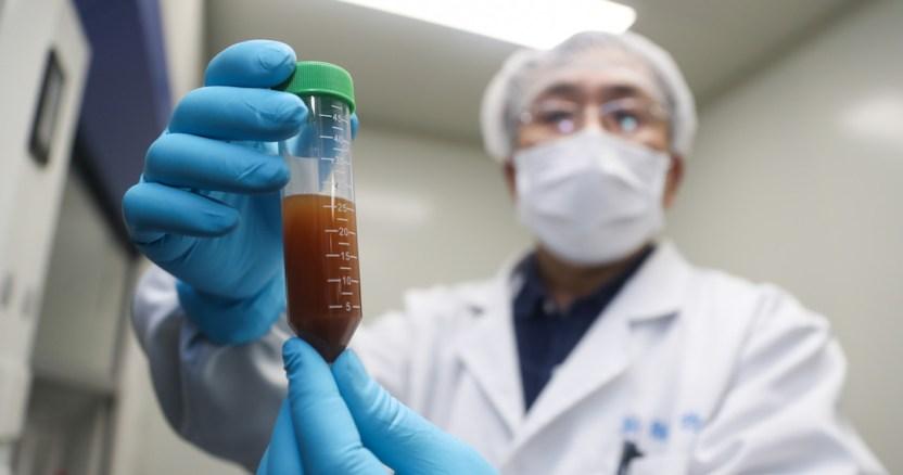 vacuna coronavirus 1 - La desinformación sobre la vacuna contra COVID-19 podría minar la confianza en esa herramienta: expertos