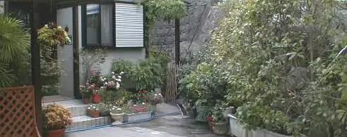 garden-30