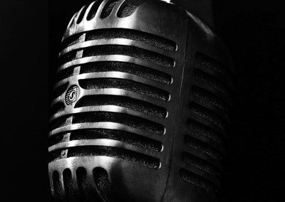 Black And Silver Mic Cover