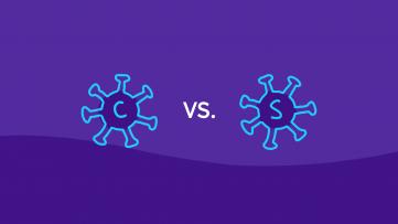 An illustration of coronavirus vs. SARS