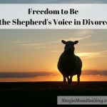 Freedom to Be the Shepherd's Voice in Divorce