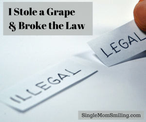 i-stole-a-grape-and-broke-the-law