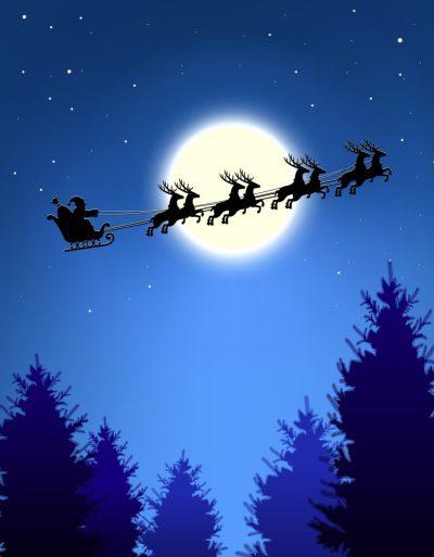 night before christmas salisbury playhouse