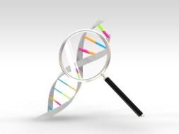Enfermedad Celíaca y Síndrome de Down: estudio científico