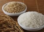 2 Recetas sin gluten con Arroz: Natillas y Croquetas