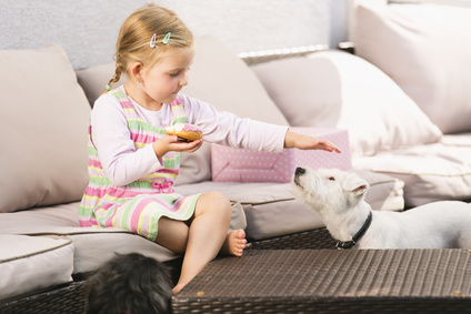 Perros Entrenados para Detectar Gluten