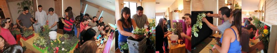 Curso de jardines verticales en Chile - Practica