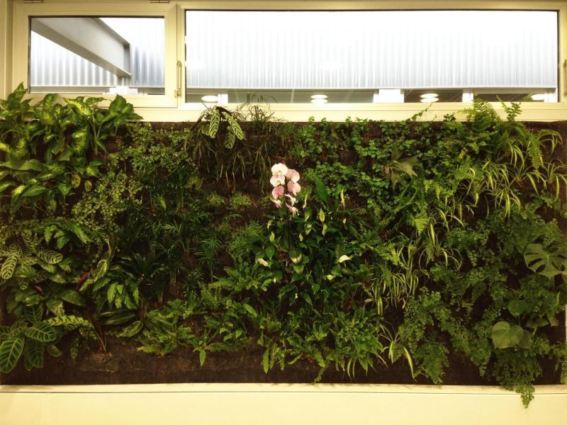 Jardín vertical de interior
