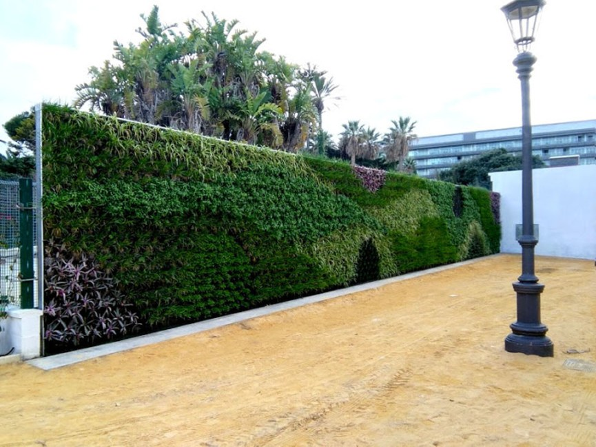 jardín vertical jardines verticales envolvente vegetal ecosistema vertical greenwall vertical garden Cádiz