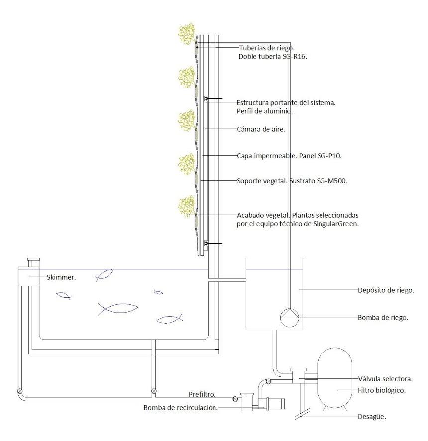 C mo hacer un jard n vertical acuap nico singulargreen - Como hacer un jardin vertical ...