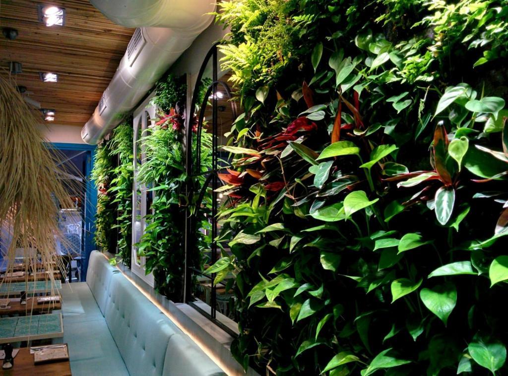 Jardín vertical F+P de interior en Mallorca