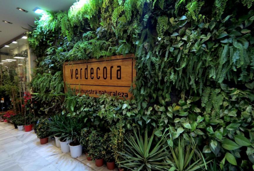 Jardín Vertical de interior en Valencia