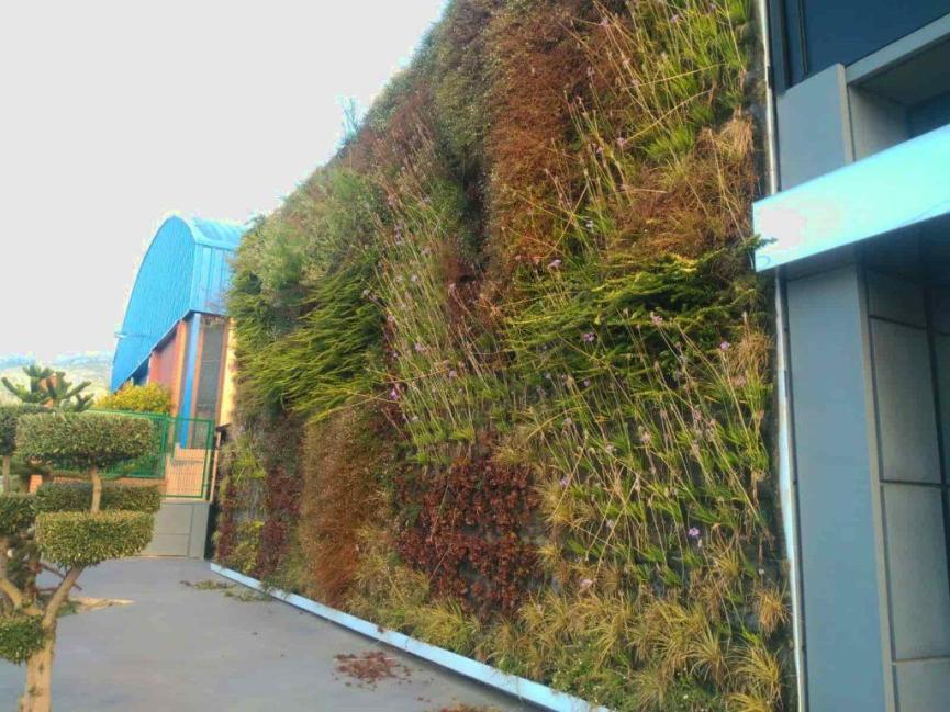 Jardín vertical Alcoi