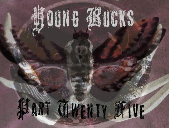 Young Bucks - Part 25