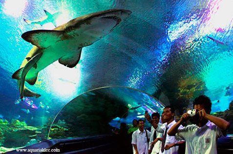 Aquaria KL, Qué ver y qué hacer en Kuala Lumpur Malasia