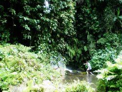 Cascada en Ubud