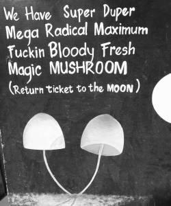 Magic Mushrooms en Gili T Indonesia