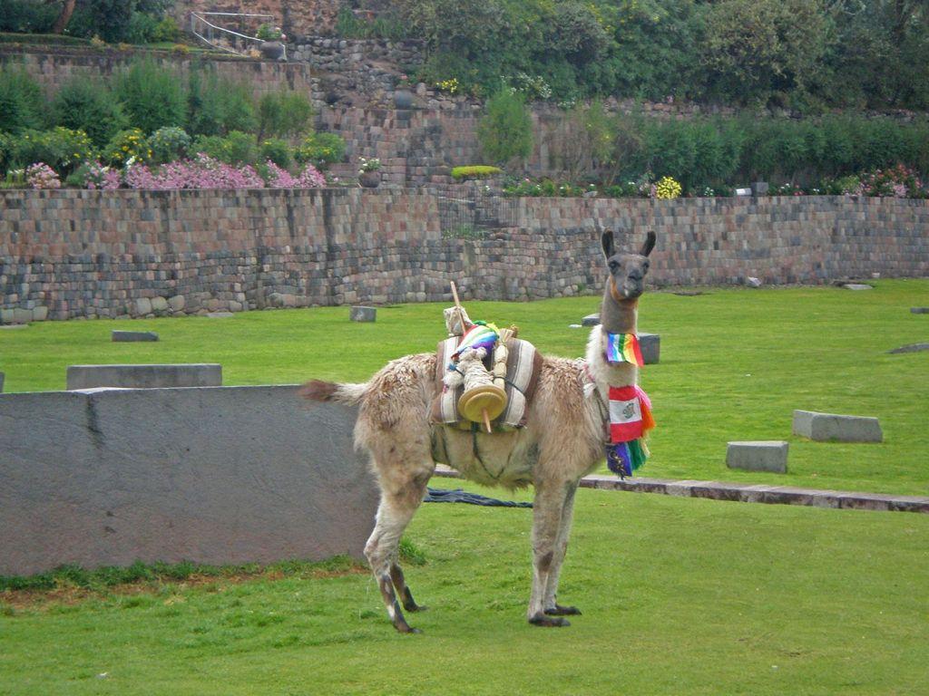 que visitar en Perú - Cusco